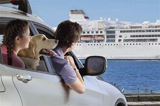 Voyager avec son chien en bateau