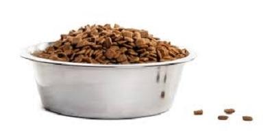 Alimentation du Rottweiler - Les croquettes
