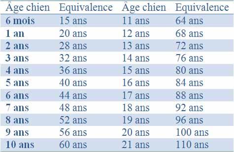 L'âge pour les chiens de moins de 15 Kg