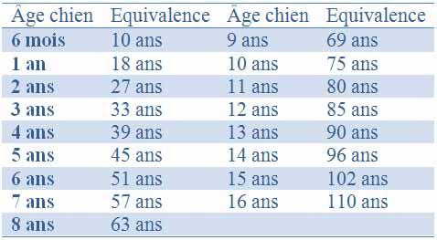 L'âge pour les chiens compris entre 15Kg et 40 Kg