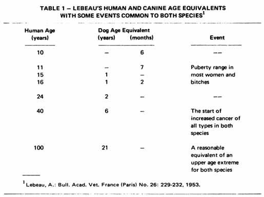 Les conclusions de A.Lebeau sur l'age du chien
