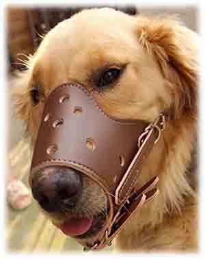 La muselière pour chien en cuir