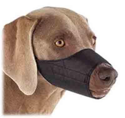 La muselière pour chien en nylon
