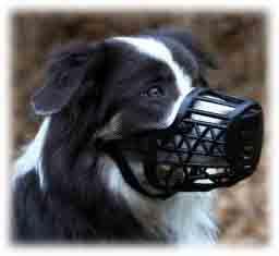 La muselière pour chien en forme de cage en plastique