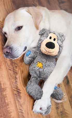 jouet pour chien mastication nounours
