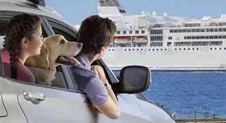 Voyager avec son chien, comment faire ? Aides, astuces et conseils