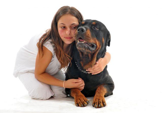 Parfum pour chien : bonne ou mauvaise idée ?